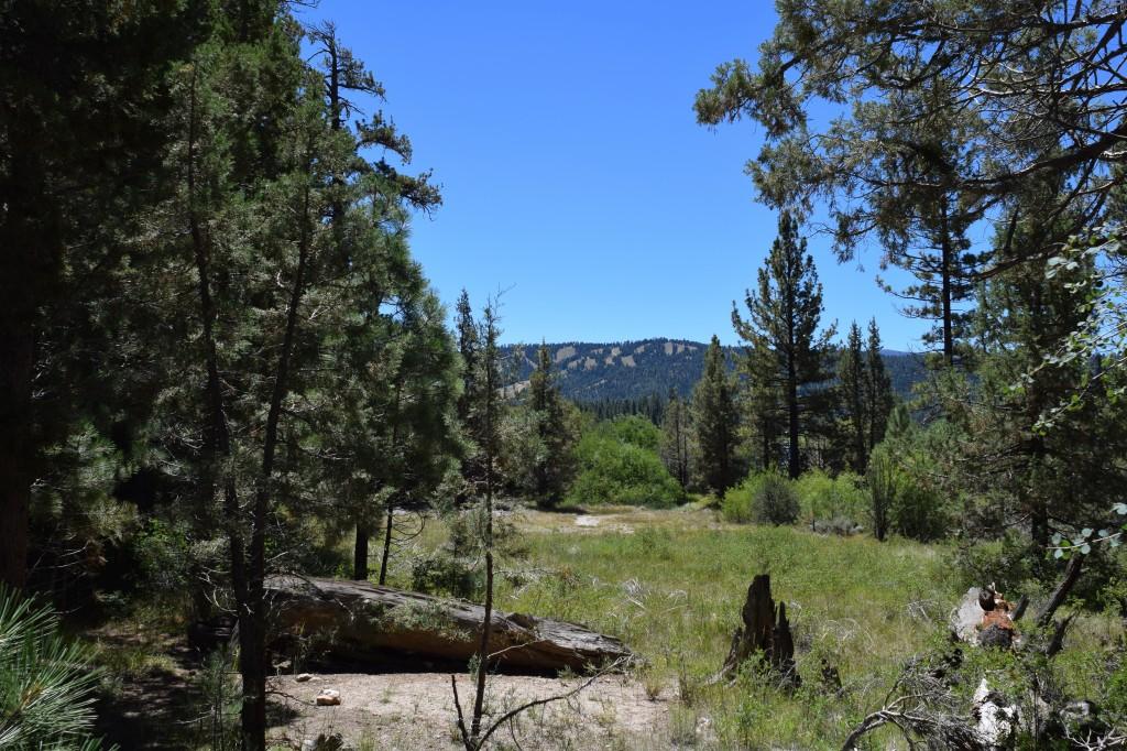 Big Bear Hiking Trail