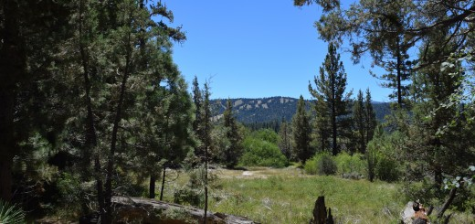 Big Bear Hiking Trail