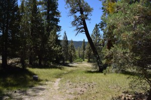 Hike Big Bear Lake