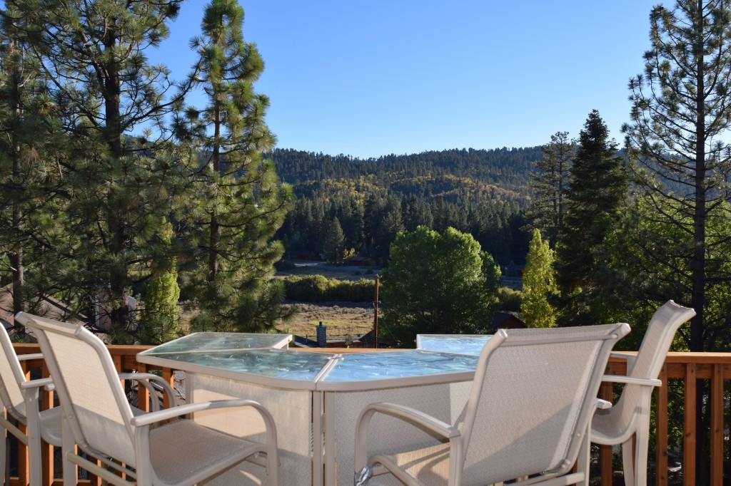 friendly lake cabins pet for big cabin rentals luxury sale bear