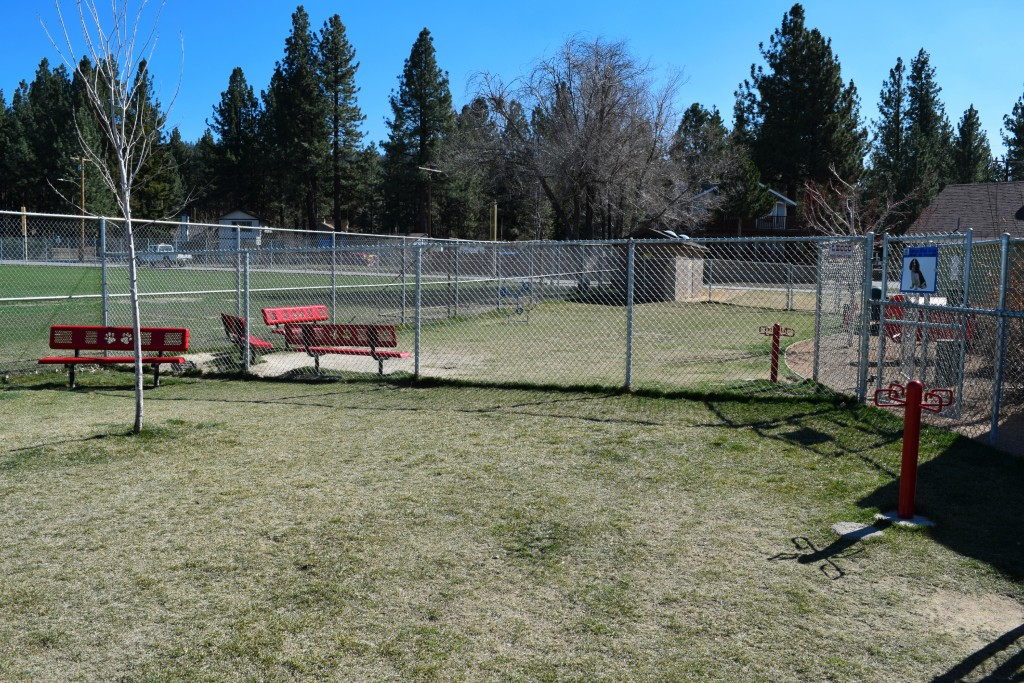 Dog Park in Big Bear Lake