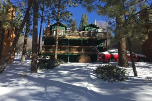 vacation rental in Big Bear thats pet friendly