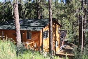 pet friendly vacation rental Big Bear