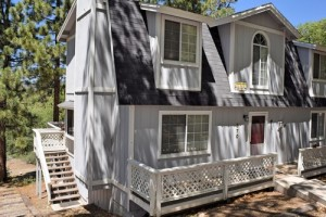 pet friendly cabin rental Big Bear