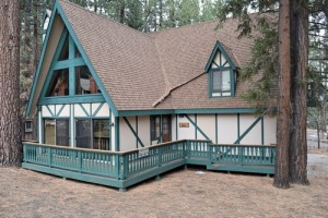 pet friendly cabin rental near Snow Summit