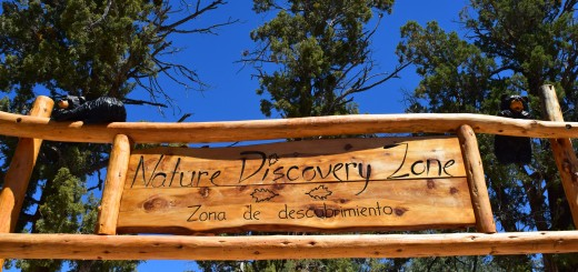Discovery Zone in Big Bear Lake