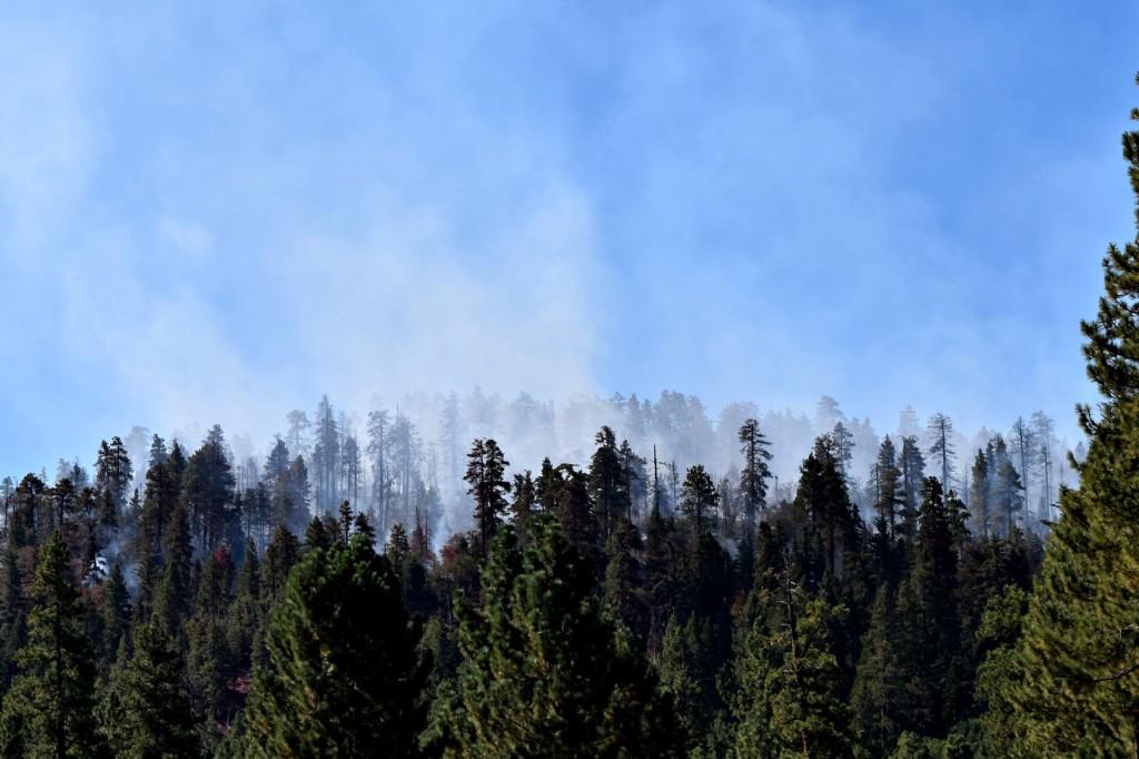 Big Bear Summit Fire 8/24/15 at 10:30 a.m.